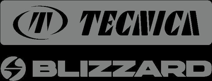 BlizzardTecnica